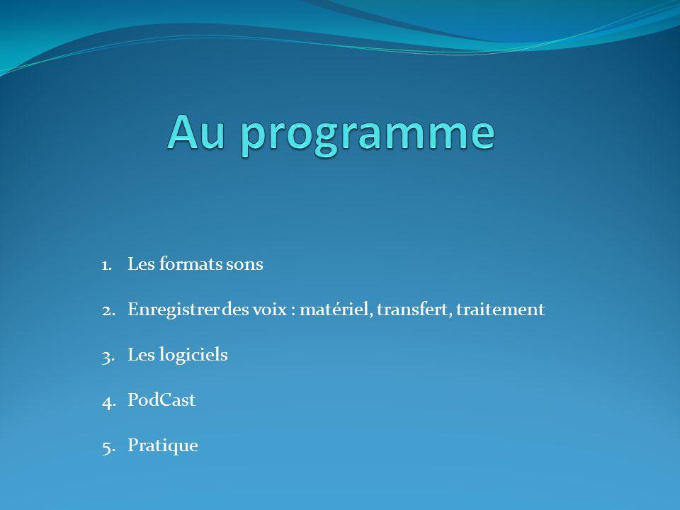 1.Les formats sons 2.Enregistrer des voix : matériel, transfert, traitement 3.Les logiciels 4.PodCast 5.Pratique