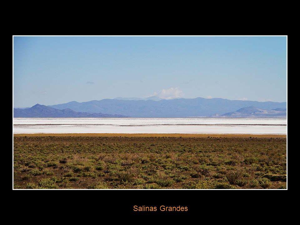 Route de Purmamarca à Salina Grande