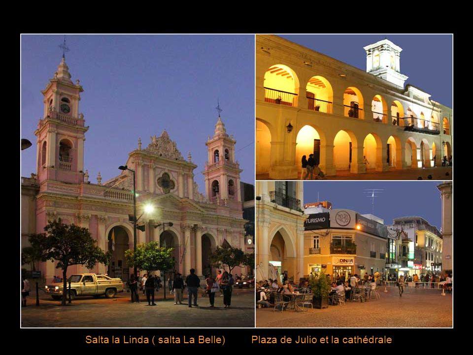 L'autre Argentine .C'est le Nord-Ouest, la province de Salta, les Andes.