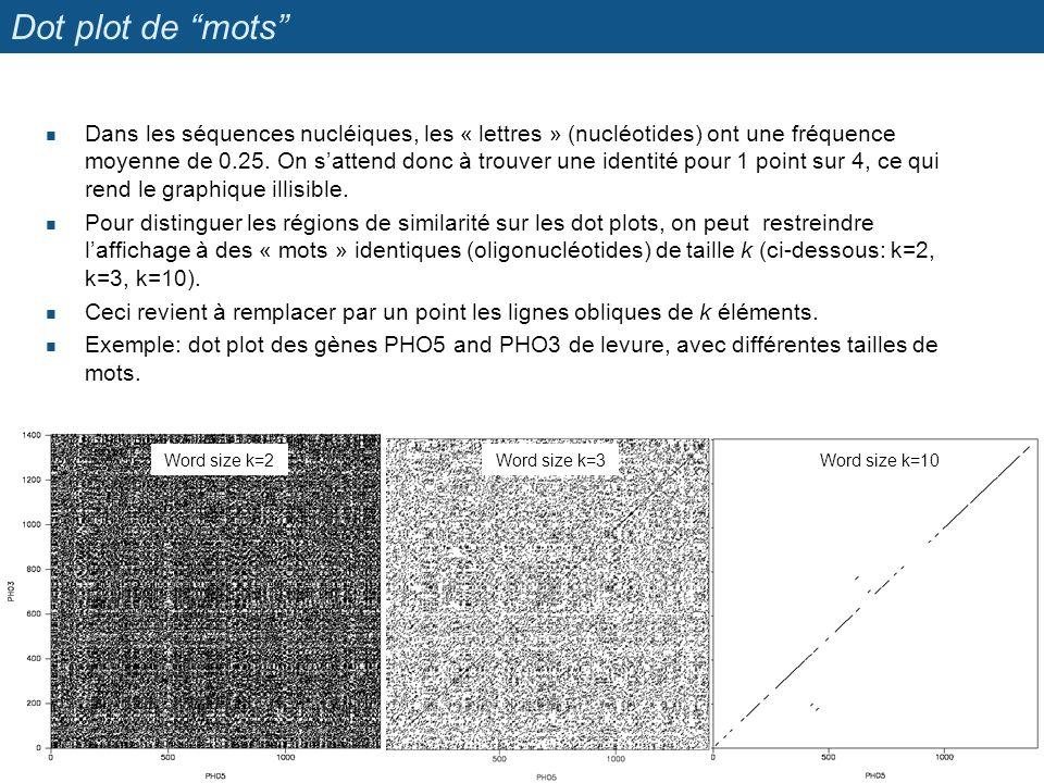 """Dot plot de """"mots"""" Dans les séquences nucléiques, les « lettres » (nucléotides) ont une fréquence moyenne de 0.25. On s'attend donc à trouver une iden"""