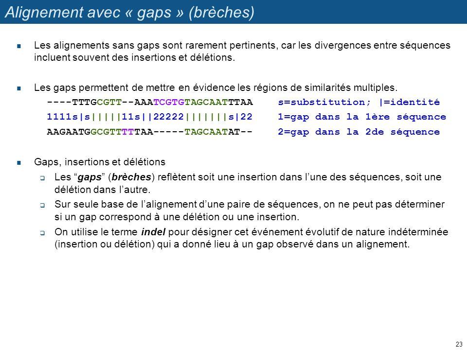 Alignement avec « gaps » (brèches) Les alignements sans gaps sont rarement pertinents, car les divergences entre séquences incluent souvent des insert