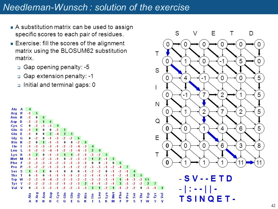 Needleman-Wunsch : solution of the exercise A substitution matrix can be used to assign specific scores to each pair of residues. Exercise: fill the s