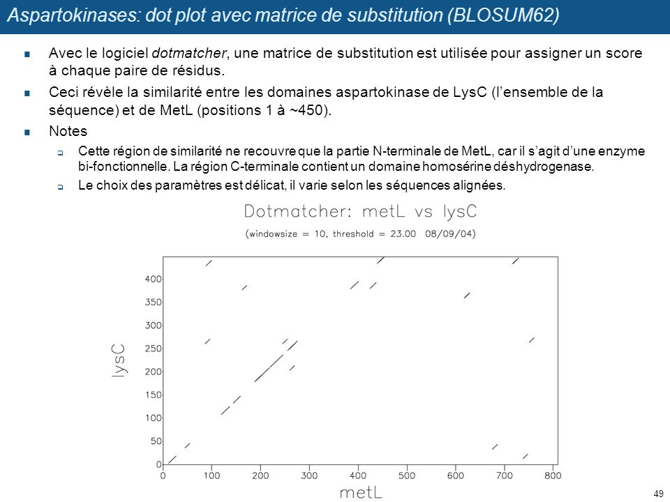 Aspartokinases: dot plot avec matrice de substitution (BLOSUM62) Avec le logiciel dotmatcher, une matrice de substitution est utilisée pour assigner u