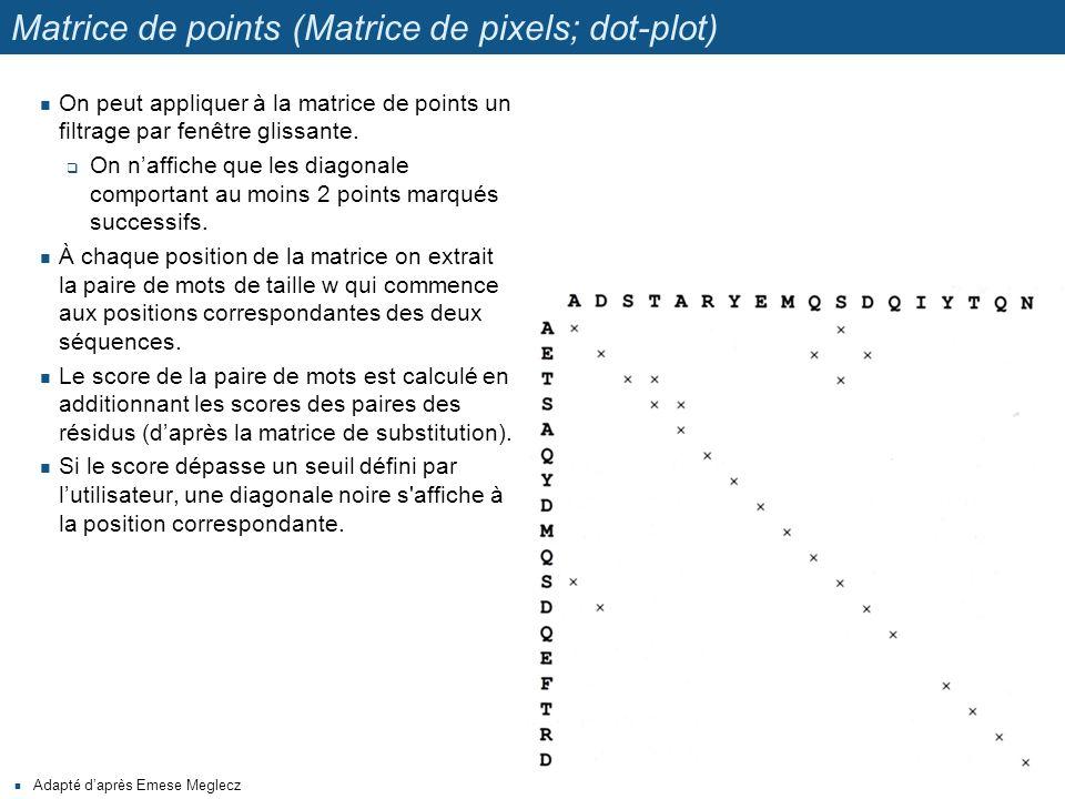 Matrice de points (Matrice de pixels; dot-plot) Adapté d'après Emese Meglecz On peut appliquer à la matrice de points un filtrage par fenêtre glissant