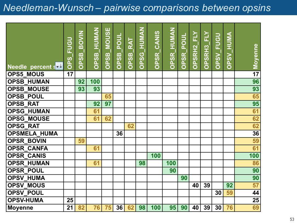 Needleman-Wunsch – pairwise comparisons between opsins 53