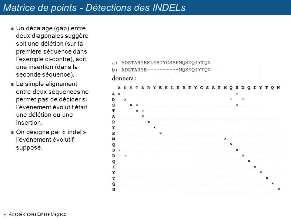 Matrice de points - Détections des INDELs Adapté d'après Emese Meglecz Un décalage (gap) entre deux diagonales suggère soit une délétion (sur la premi