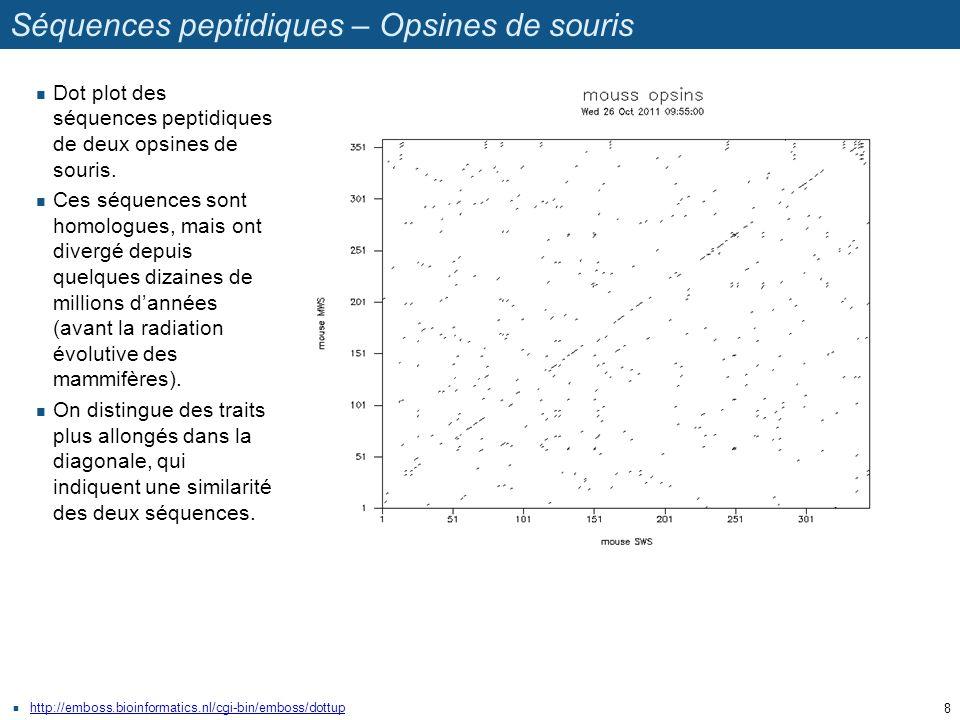 Séquences peptidiques – Opsines de souris http://emboss.bioinformatics.nl/cgi-bin/emboss/dottup Dot plot des séquences peptidiques de deux opsines de