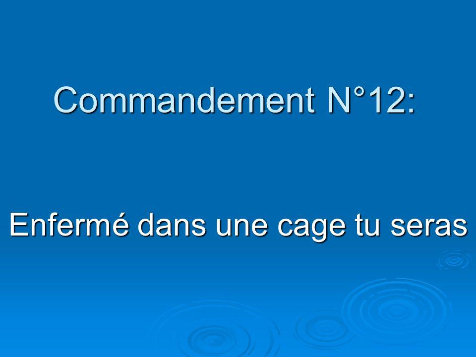 Commandement N°12: Enfermé dans une cage tu seras
