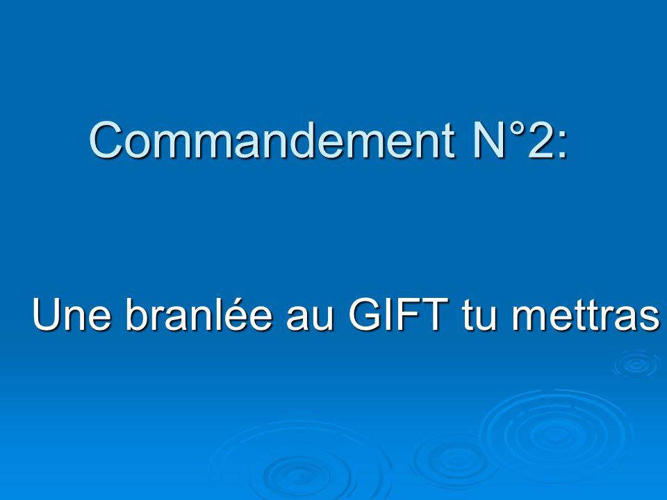 Commandement N°2: Une branlée au GIFT tu mettras