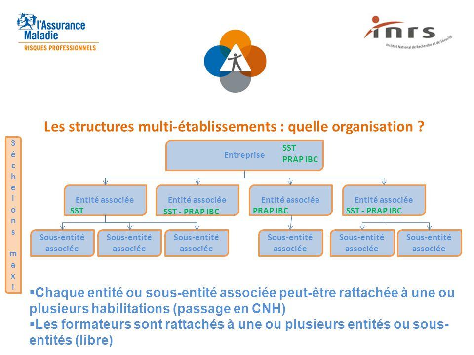 Les structures multi-établissements : quelle organisation ? Entreprise Entité associée Sous-entité associée 3échelonsmaxi3échelonsmaxi  Chaque entité