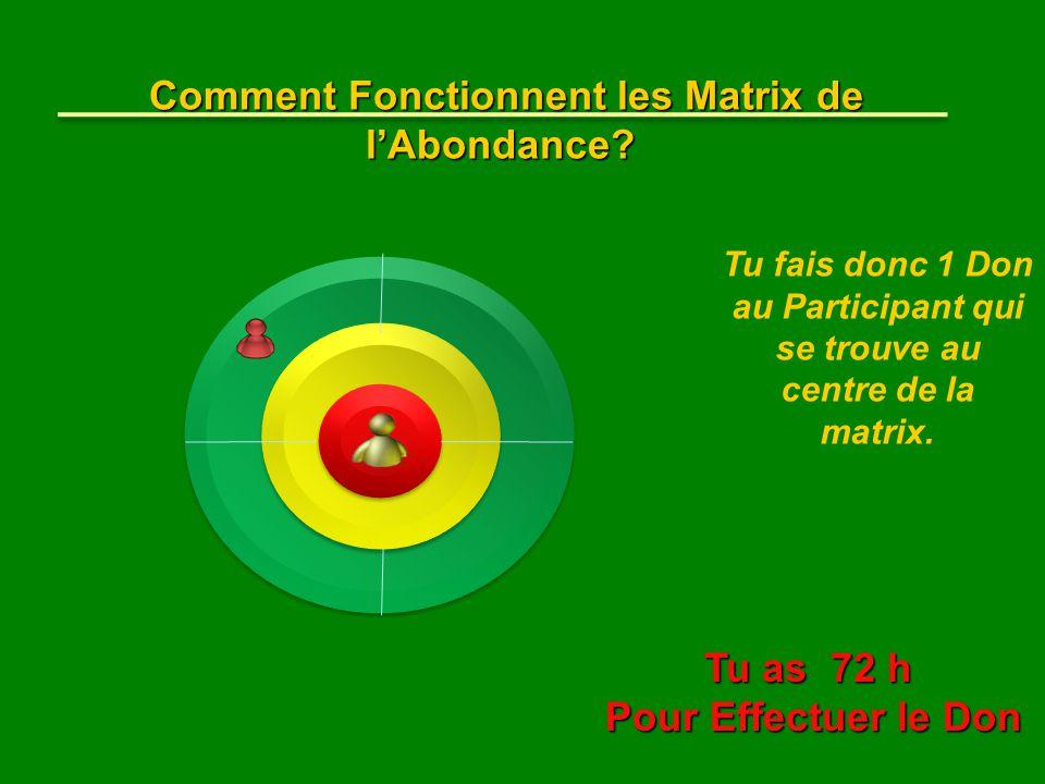 Tu fais donc 1 Don au Participant qui se trouve au centre de la matrix. Comment Fonctionnent les Matrix de l'Abondance? Tu as 72 h Pour Effectuer le D