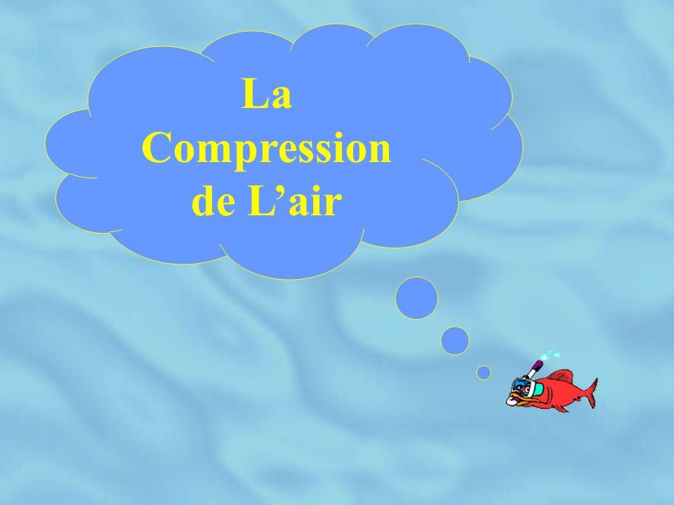 LE COMPRÉSSEUR H.P Généralités sur la compression Les moyens mécaniques La lubrification Le refroidissement Purge des condensats et purification de l'air Périphériques et organes de sécurité