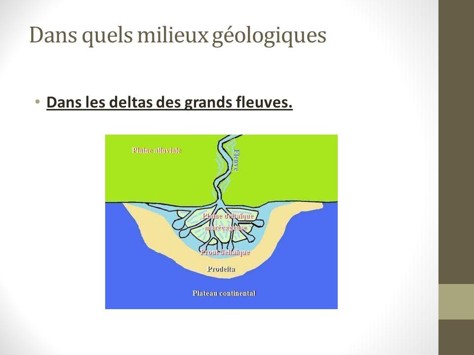 Dans quels milieux géologiques Dans les deltas des grands fleuves.