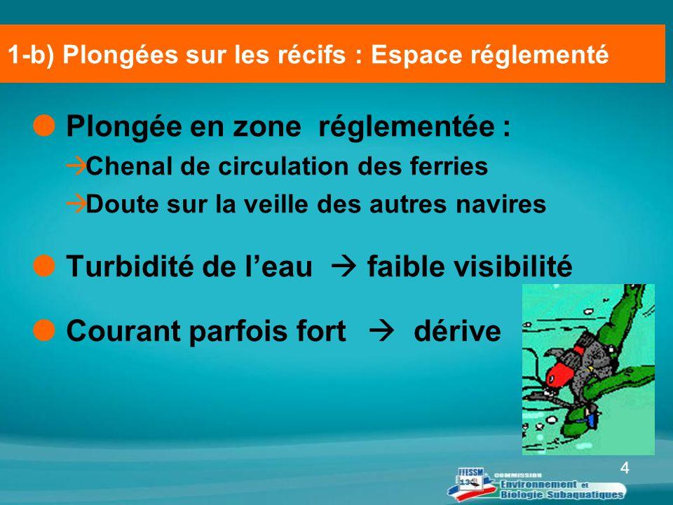 4  Plongée en zone réglementée :  Chenal de circulation des ferries  Doute sur la veille des autres navires  Turbidité de l'eau  faible visibilit