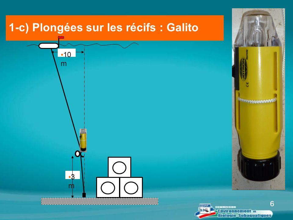 6 1-c) Plongées sur les récifs : Galito 3 m 10 m