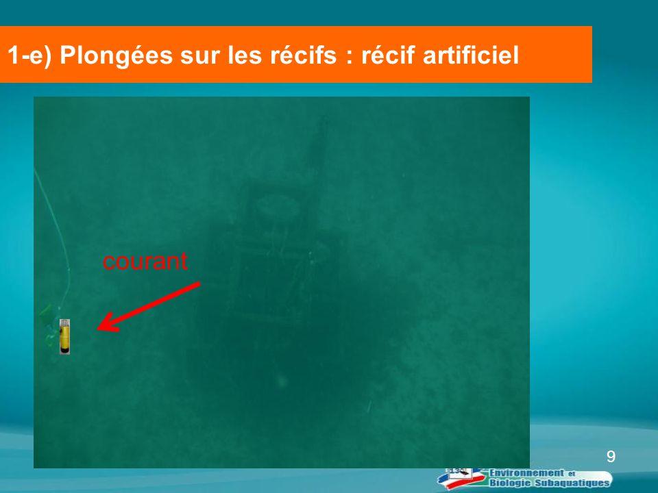 9 1-e) Plongées sur les récifs : récif artificiel courant