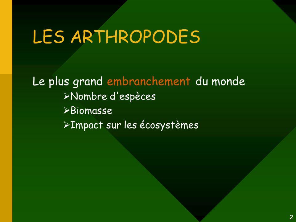 2 LES ARTHROPODES Le plus grand embranchement du monde  Nombre d'espèces  Biomasse  Impact sur les écosystèmes