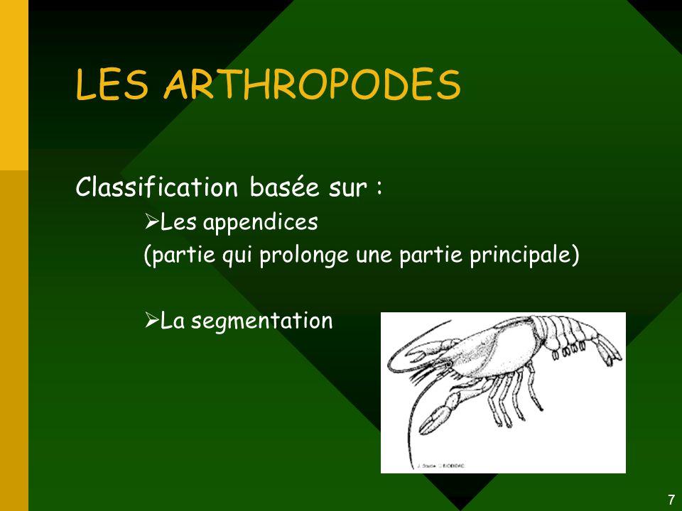 7 LES ARTHROPODES Classification basée sur :  Les appendices (partie qui prolonge une partie principale)  La segmentation