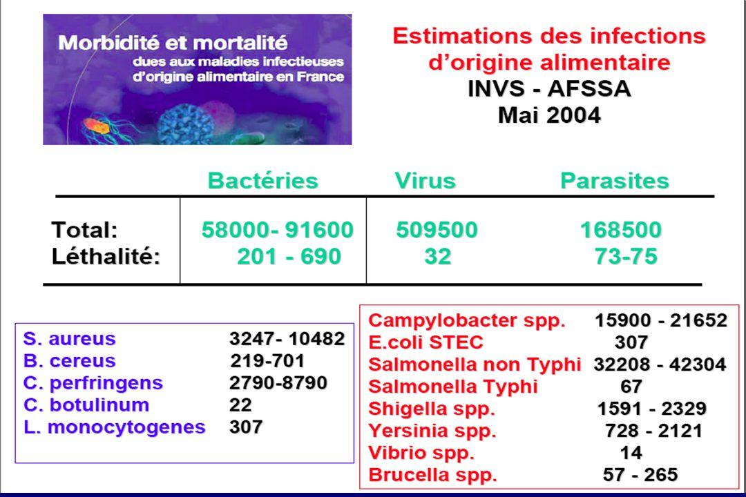 Campylobacter Caractères bactériologiques Petits bacilles Gram- incurvés, spiralés, en S , très mobiles par un flagelle polaire Culture sur milieux spéciaux pouvant être rendus sélectifs (gélose de Karmali au charbon ou gélose au sang) Incubation en atmosphère microaérobie Petites colonies translucides en 2 à 7 jours, oxydase +, sucres- Pouvoir pathogène - Entérites entérite de l'enfant: début plus lent et symptômes (fièvre, diarrhée, vomissts) généralt moins marqués qu'avec les salmonelles ou les rotavirus.
