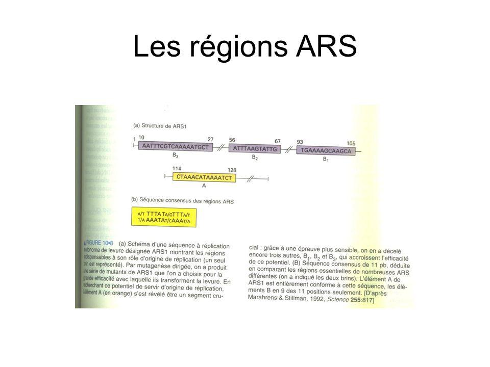 Les régions ARS