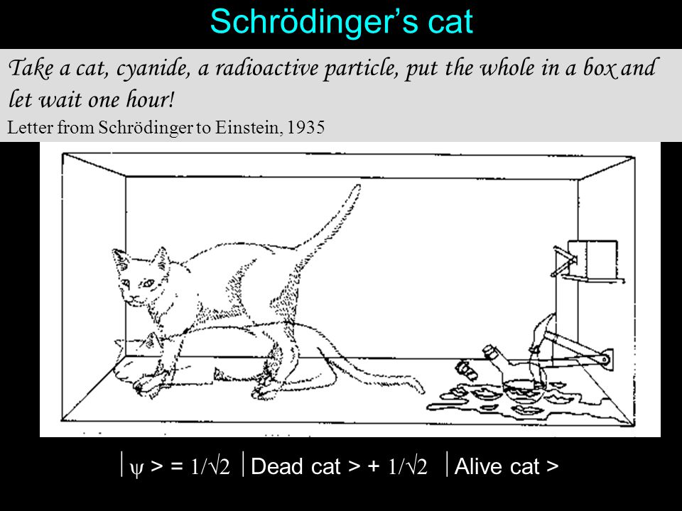 40 Schrödinger's cat Take a cat, cyanide, a radioactive particle, put the whole in a box and let wait one hour! Letter from Schrödinger to Einstein, 1
