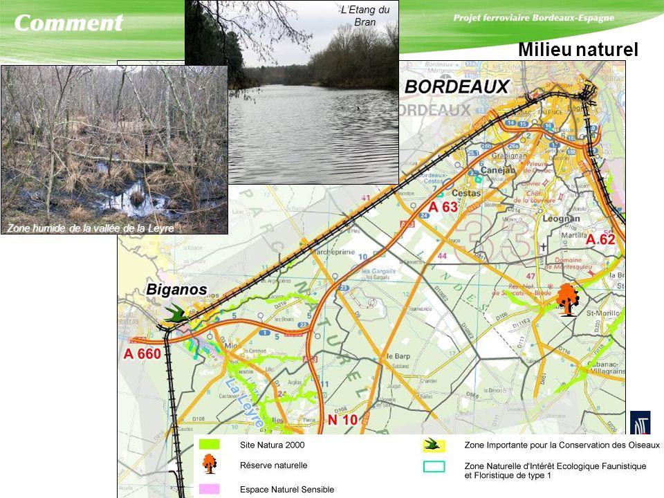 Milieu naturel L'Etang du Bran Zone humide de la vallée de la Leyre