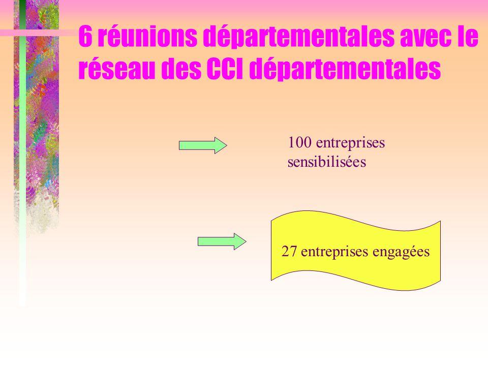 6 réunions départementales avec le réseau des CCI départementales 27 entreprises engagées 100 entreprises sensibilisées
