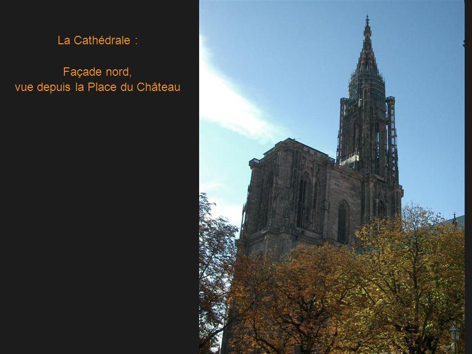 La Cathédrale : Façade nord, vue depuis la Place du Château