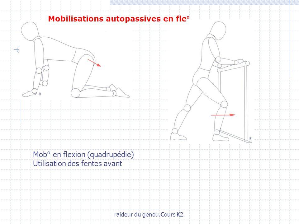 raideur du genou.Cours K2. Mob° en flexion (quadrupédie) Utilisation des fentes avant Mobilisations autopassives en fle°