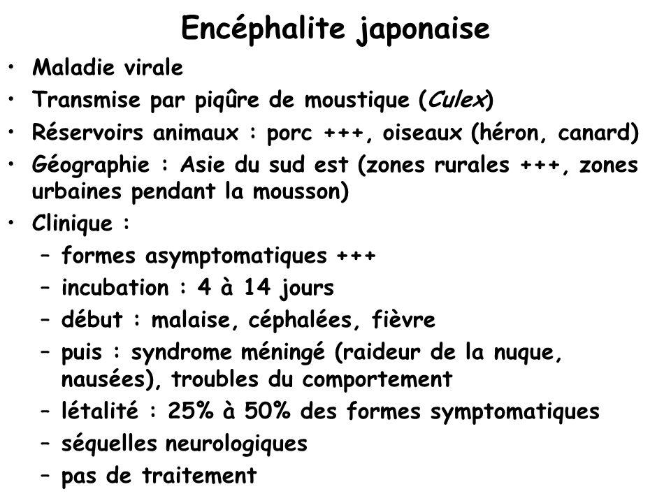 Encéphalite japonaise Maladie virale Transmise par piqûre de moustique (Culex) Réservoirs animaux : porc +++, oiseaux (héron, canard) Géographie : Asi
