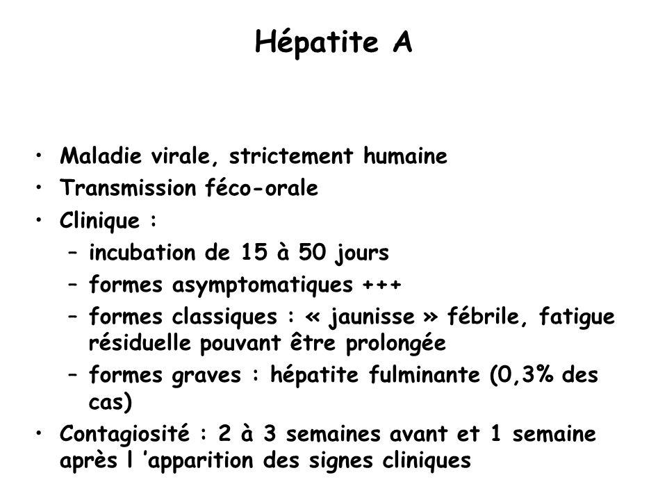 Hépatite A Maladie virale, strictement humaine Transmission féco-orale Clinique : –incubation de 15 à 50 jours –formes asymptomatiques +++ –formes cla