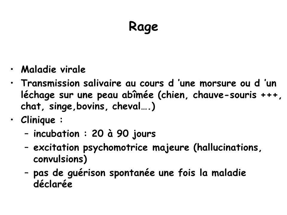 Rage Maladie virale Transmission salivaire au cours d 'une morsure ou d 'un léchage sur une peau abîmée (chien, chauve-souris +++, chat, singe,bovins,