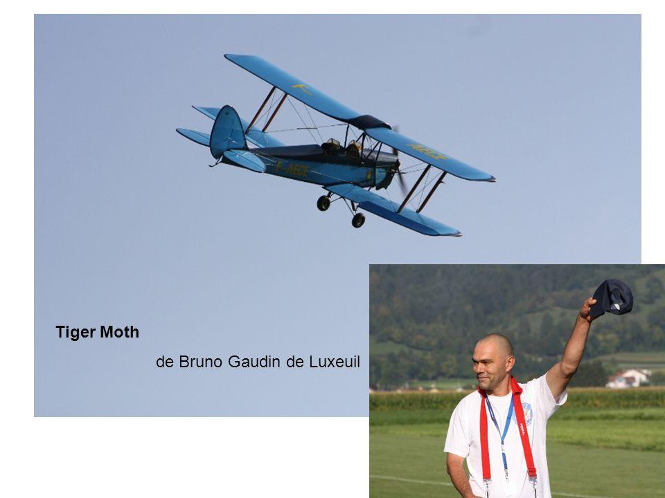 Tiger Moth de Bruno Gaudin de Luxeuil
