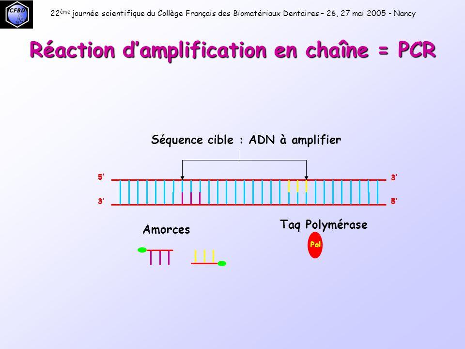 Premier cycle Étape 1 : DÉNATURATION  : 95°C  : 45 s 22 ème journée scientifique du Collège Français des Biomatériaux Dentaires – 26, 27 mai 2005 - Nancy 5' 3' 5'3'