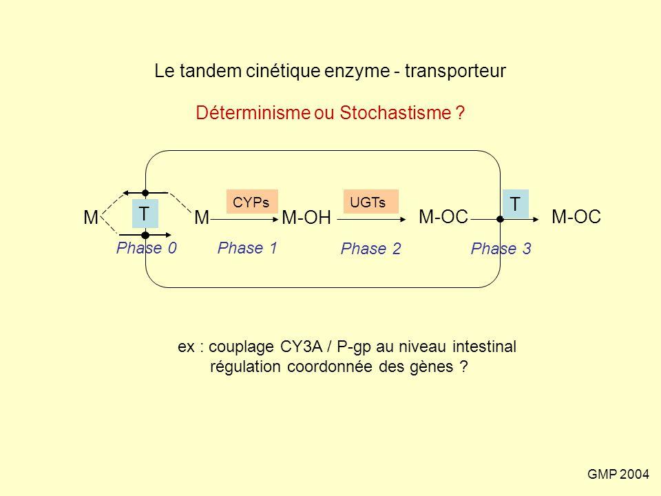 GMP 2004 Le tandem cinétique enzyme - transporteur Déterminisme ou Stochastisme ? MM-OH M-OC M Phase 0Phase 1 Phase 2Phase 3 T UGTsCYPs ex : couplage