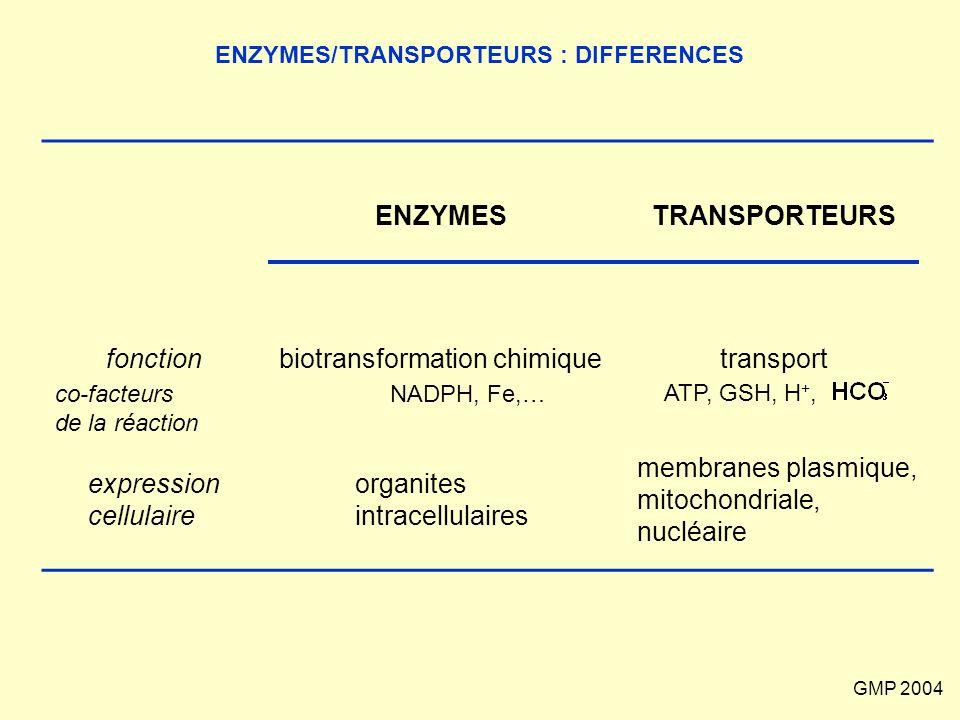 GMP 2004 ENZYMES/TRANSPORTEURS : DIFFERENCES ENZYMESTRANSPORTEURS fonctionbiotransformation chimiquetransport expression cellulaire organites intracel