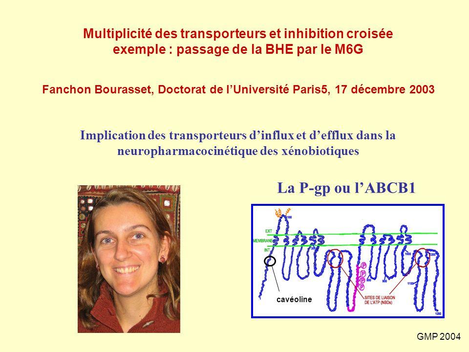 GMP 2004 Fanchon Bourasset, Doctorat de l'Université Paris5, 17 décembre 2003 Multiplicité des transporteurs et inhibition croisée exemple : passage d