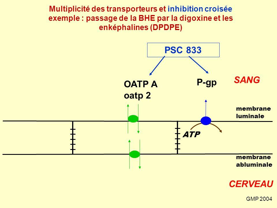 GMP 2004 SANG CERVEAU membrane abluminale membrane luminale P-gp ATP OATP A oatp 2 Multiplicité des transporteurs et inhibition croisée exemple : pass