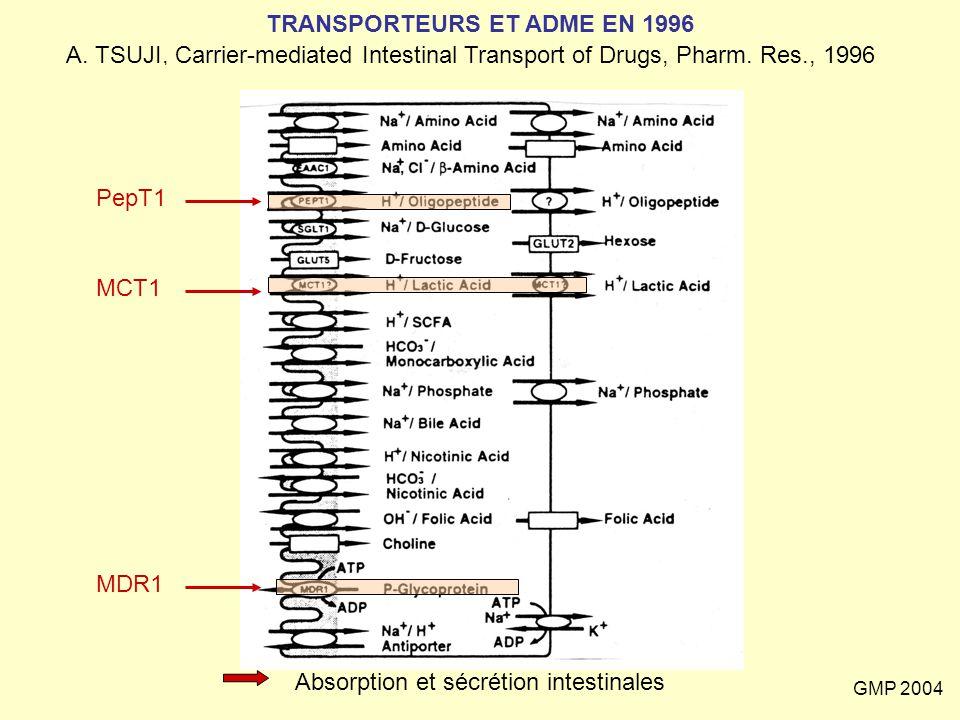 GMP 2004 TRANSPORTEURS ET ADME EN 1996 A. TSUJI, Carrier-mediated Intestinal Transport of Drugs, Pharm. Res., 1996 PepT1 MCT1 MDR1 Absorption et sécré