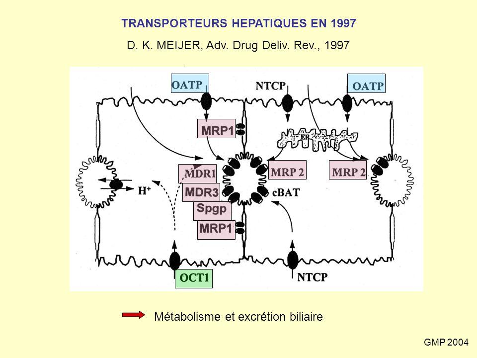 GMP 2004 TRANSPORTEURS HEPATIQUES EN 1997 D. K. MEIJER, Adv. Drug Deliv. Rev., 1997 Métabolisme et excrétion biliaire