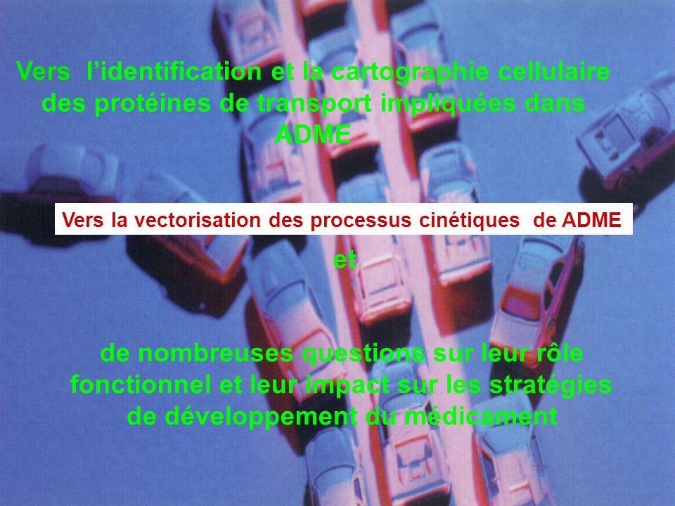 GMP 2004 Fanchon Bourasset, Doctorat de l'Université Paris5, 17 décembre 2003 Multiplicité des transporteurs et inhibition croisée exemple : passage de la BHE par le M6G Implication des transporteurs d'influx et d'efflux dans la neuropharmacocinétique des xénobiotiques cavéoline La P-gp ou l'ABCB1
