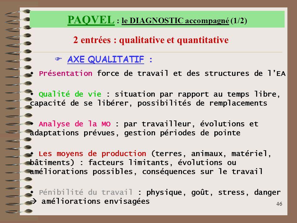 46 PAQVEL : le DIAGNOSTIC accompagné (1/2) 2 entrées : qualitative et quantitative  AXE QUALITATIF :  P P résentation force de travail et des struc