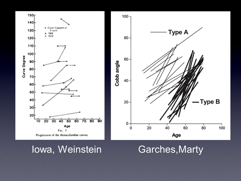 Iowa, WeinsteinGarches,Marty