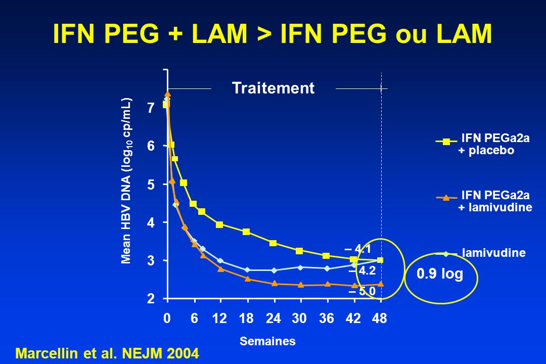 IFN PEG + LAM > IFN PEG ou LAM Semaines Traitement Mean HBV DNA (log 10 cp/mL) 2 3 4 5 6 7 0612182430364248 IFN PEGa2a + placebo lamivudine + lamivudi