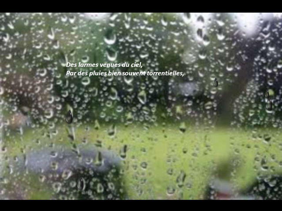 Des larmes venues du ciel, Par des pluies bien souvent torrentielles,