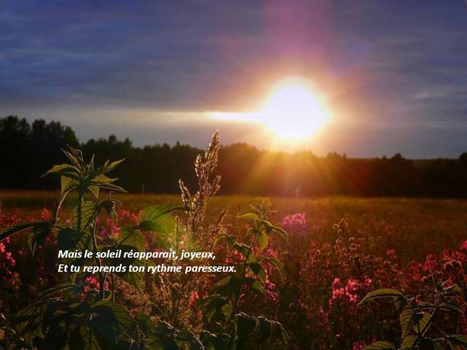 Mais le soleil réapparait, joyeux, Et tu reprends ton rythme paresseux.