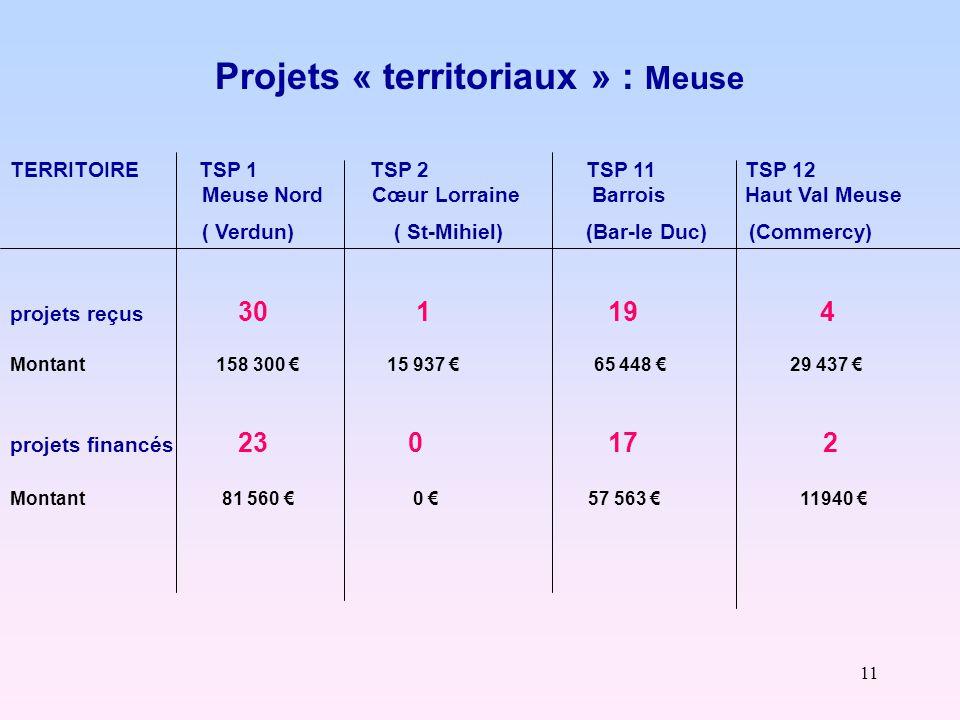 11 Projets « territoriaux » : Meuse TERRITOIRE TSP 1 TSP 2 TSP 11 TSP 12 Meuse Nord Cœur Lorraine Barrois Haut Val Meuse ( Verdun)( St-Mihiel)(Bar-le Duc) (Commercy) projets reçus 30 1 19 4 Montant 158 300 € 15 937 € 65 448 € 29 437 € projets financés 23 0 17 2 Montant 81 560 € 0 € 57 563 € 11940 €