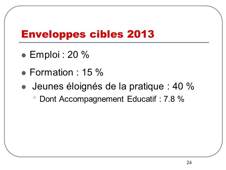 24 Enveloppes cibles 2013 Emploi : 20 % Formation : 15 % Jeunes éloignés de la pratique : 40 % Dont Accompagnement Educatif : 7.8 %