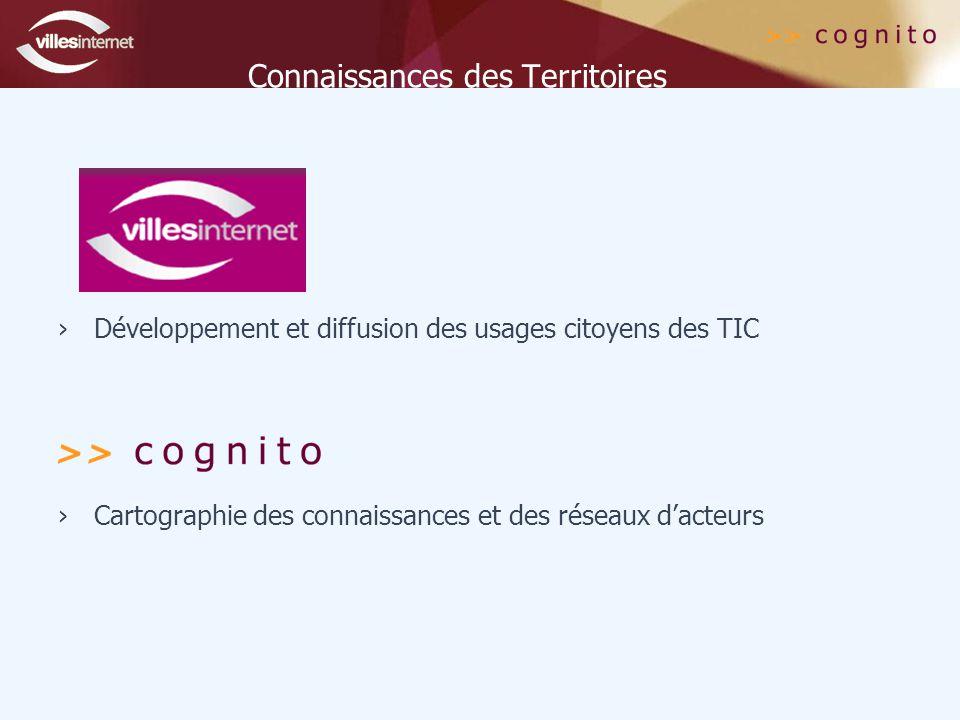 Connaissances des Territoires ›Développement et diffusion des usages citoyens des TIC ›Cartographie des connaissances et des réseaux d'acteurs