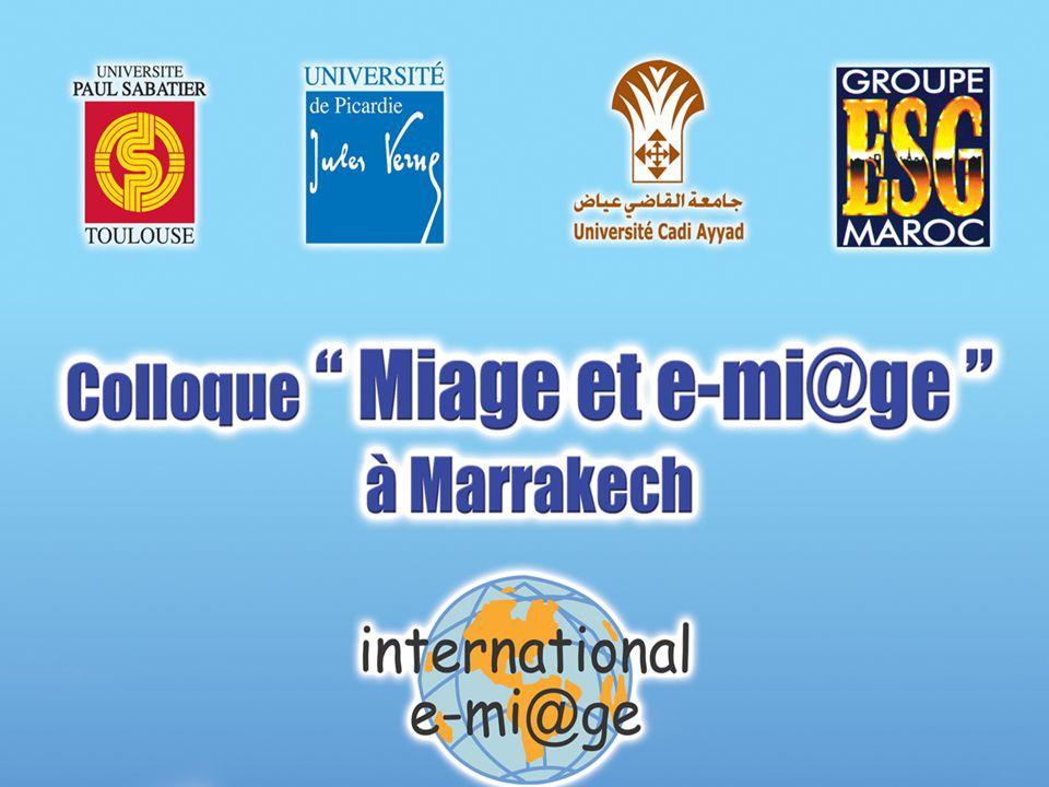 DM/GMC Séminaire Mutualisation des TIC dans L'enseignement supérieur MJENR/DT/SDTICE Tapis Rouge 31 Mars 2004 21